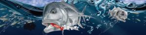 marine-digital-art