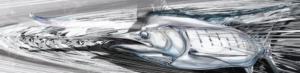 blue-marlin-carbon-boat-wrap