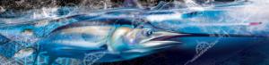 underwater-boat-graphics