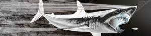 psycho-mako-digital-boat-wrap